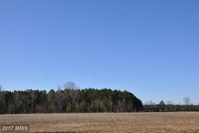 Wicomico, WICOMICO COUNTY Residential Lots & Land For Sale: Barbaro Drive