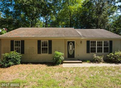 Somerset, Wicomico, Worcester Single Family Home For Sale: 6115 Rockawalkin Road
