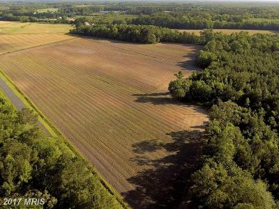 Wicomico, WICOMICO COUNTY Residential Lots & Land For Sale: Parsonburg Road