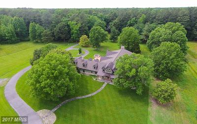 Somerset, Wicomico, Worcester Single Family Home For Sale: 4874 Airport Road
