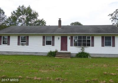 Somerset, Wicomico, Worcester Single Family Home For Sale: 5706 Forest Grove Road
