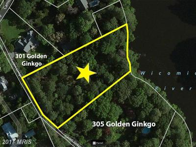 Wicomico, WICOMICO COUNTY Residential Lots & Land For Sale: 303 Golden Ginkgo Lane