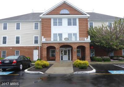Somerset, Wicomico, Worcester Condo For Sale: 1103 Schumaker Drive #C-205