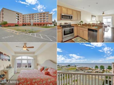Colonial Beach Condo For Sale: 103 Irving Avenue #501