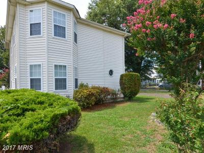 Westmoreland Single Family Home For Sale: 15 Marshall Avenue