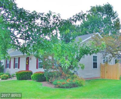 Winchester Single Family Home For Sale: 329 Cedarmeade Avenue
