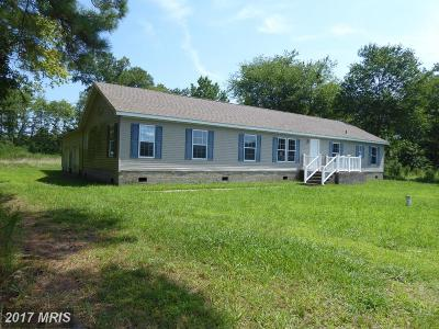 Pocomoke City Single Family Home For Sale: 1217 New Bridge Road