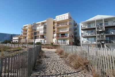 Somerset, Wicomico, Worcester Condo For Sale: 12705 Wight Street #207