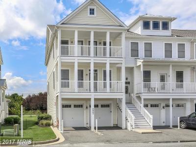 Ocean City Townhouse For Sale: 9903 Bay Court Lane #54