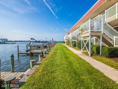 Ocean City Single Family Home For Sale: 8906 Rusty Anchor Road #1402