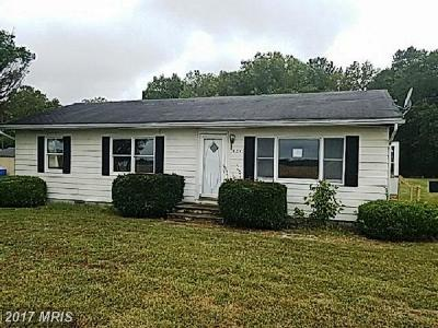 Somerset, Wicomico, Worcester Single Family Home For Sale: 4247 Market Street
