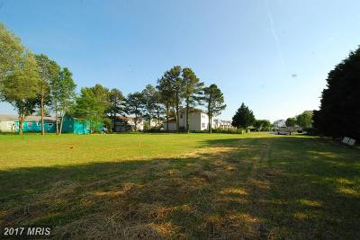 Worcester, WORCESTER COUNTY Residential Lots & Land For Sale: 178 Jefferson Avenue