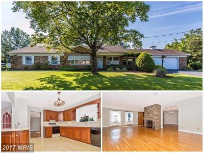 Dover Single Family Home For Sale: 4340 Paradise Road