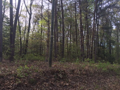 Richmond County Residential Lots & Land For Sale: Lot 2 Deer Trail Drive