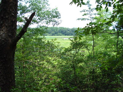 Essex County Residential Lots & Land For Sale: 00 Ridgecrest Court