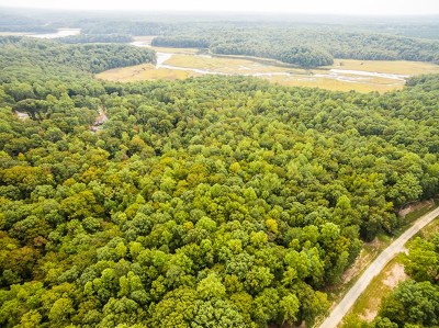 Essex County Residential Lots & Land For Sale: 00 Beech Tree Lane