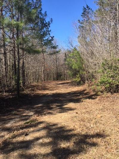 Richmond County Residential Lots & Land For Sale: 13200 Flat Iron Road