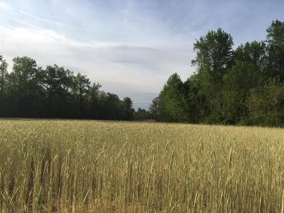 Westmoreland County Residential Lots & Land For Sale: 500 Grainery Road