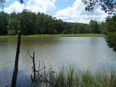 Richmond County Residential Lots & Land For Sale: 00 Hussey's Creek Rd