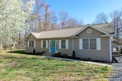 Westmoreland County Single Family Home For Sale: 401 American Drive