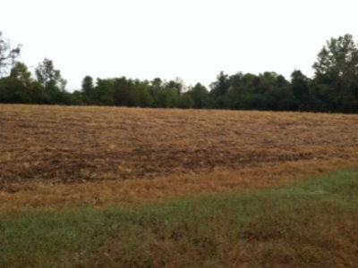 Richmond County Residential Lots & Land For Sale: History Land Hwy