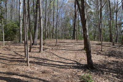 Richmond County Residential Lots & Land For Sale: Settlers Landing Road