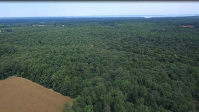 Westmoreland County Residential Lots & Land For Sale: 000 Horners Mill Rd