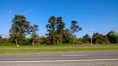 Dublin Residential Lots & Land For Sale: Skyview Circle