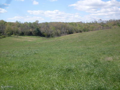 Radford VA Residential Lots & Land For Sale: $199,900