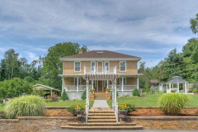 Floyd County Single Family Home For Sale: 244 Christiansburg Pike