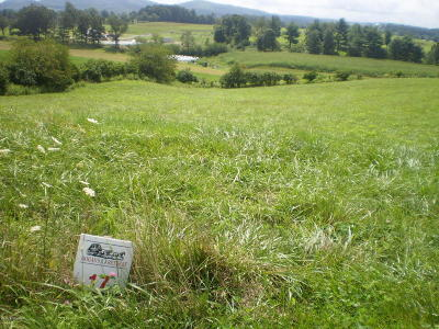 Riner VA Residential Lots & Land For Sale: $49,500