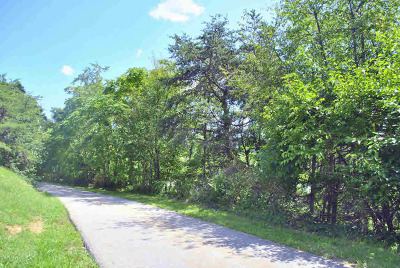 Christiansburg Residential Lots & Land For Sale: Tbd .373ac Edgewood Drive