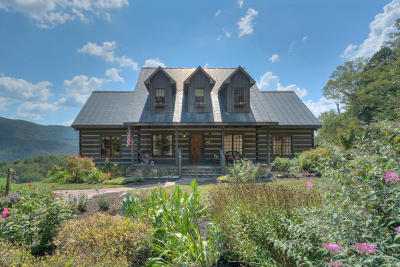 Blacksburg Single Family Home For Sale: 3680 Catawba Road