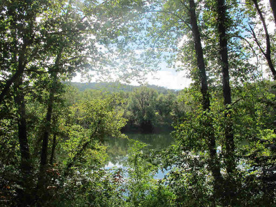 Giles County Residential Lots & Land For Sale: 106 Houston Lane