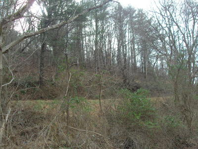 Residential Lots & Land Sold: W Tbd Lot 3-Ph 3 Panorama Acres Common