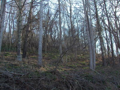 Residential Lots & Land For Sale: W Tbd Lot 4-Ph 3 Panorama Acres Common