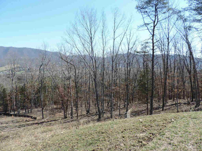 Blacksburg Residential Lots & Land For Sale: 1210 Nellies Cave Road