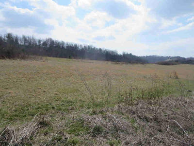 Residential Lots & Land For Sale: Boyd Road
