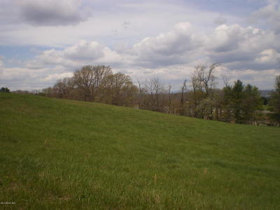 Residential Lots & Land Sold: Lot 2 Harman Dr