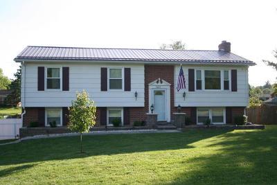 Dublin Single Family Home For Sale: 5883 Oak Grove Ave