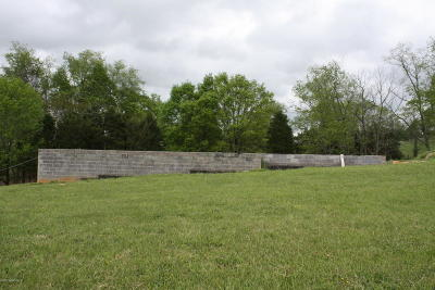 Pulaski County Residential Lots & Land For Sale: 6579 Wilderness Road