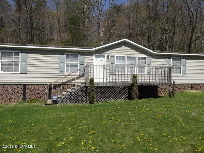 Pearisburg Single Family Home For Sale: 772 Walkers Creek Valley Rd