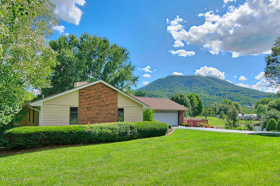 Pearisburg Single Family Home For Sale: 1106 Valleyview Drive