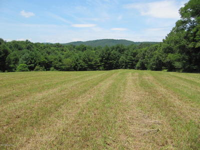 Residential Lots & Land Sold: 1909 Horse Ridge Road