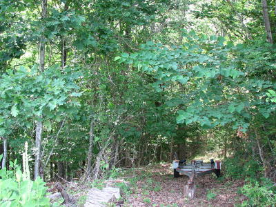 Radford VA Residential Lots & Land For Sale: $61,900