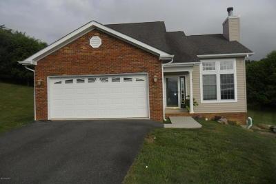Pulaski County Single Family Home For Sale: 1009 Red Fox Ln