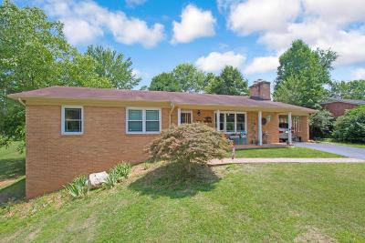Radford Single Family Home For Sale: 300 9th St