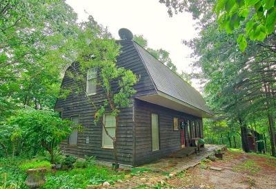 Christiansburg Single Family Home For Sale: 266 Declaration Ln