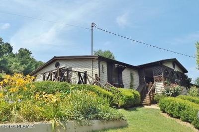Pearisburg Single Family Home For Sale: 528 Bear Springs Road