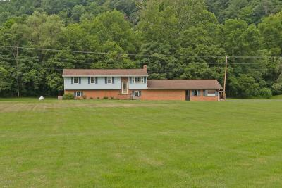 Shawsville Single Family Home For Sale: 1969 Strawberry Cir